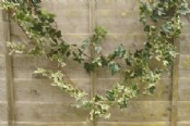 Artificial Ivy Garlands