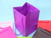 Large Coloured Gift Bag