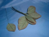 Artificial Dried Rose Leaf