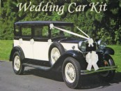 Wedding Car  Ribbon Kit