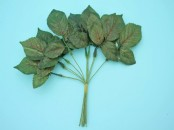 Artificial Rose Leaves