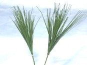 Artificial Bear Grass  (Onion Grass)