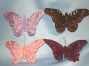 Giant Exotic Butterflies X 6